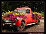 flower_truck03_5785.jpg