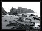 beach04_0801.jpg