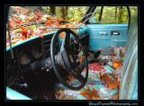 abandoned_car_8481.jpg
