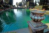 Fish-Ponds2.jpg