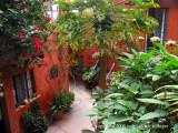 friday: Mansion del Bosque