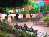 jardin in the rain