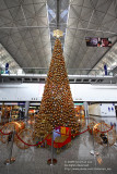 X'mas at airport