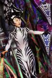 Zebra in Lion King Show