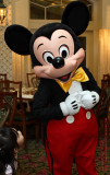 Mickey's admirer