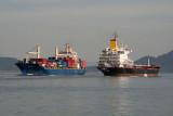 Lambari e Port Said