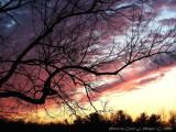 December 3 2006 Sunset.JPG