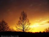 Sunset, December 3, 2006