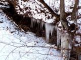 Wintering Winter!