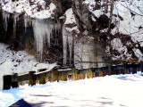 Wintering Winter at Clifty Falls Park.JPG