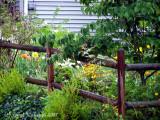 Neighborhood garden \ West Virginia