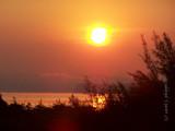 Sunrise MILTON.