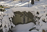 Grave Marker After a Snowfall at Mount Auburn