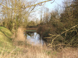 The flooded North side of the moat,Castle Camps,motte and bailey