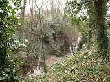 Chipping Ongar Castle;the moat