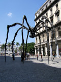 Louise Bourgeois famous spiders, Havana