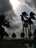 Stormy, Isla de la Juventud
