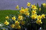 D70-2007-03-17_062.jpg