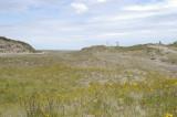 Guise Bay Sand Dunes - KM 20.7