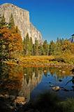 Yosemite Nat'l Park 3