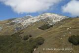 The way ahead - Mt Titiroa