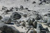 Granite sand, stones, rocks