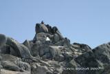 Fliss on top - yet more granite