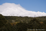 Morning views of Ruapehu
