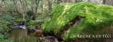 La roche aux fées.jpg