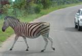 Africa-0007.jpg