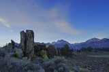 near hot cr.   eastern sierra calif.