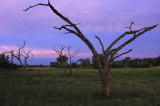 kwarra sunset