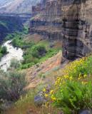 middle deschutes canyon