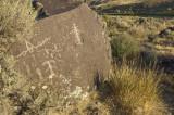 Owyhee river petroglyph