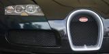 Bugatti Veyron (_DSC1697.jpg)