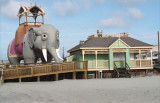 Lucy the Elephant    Margate, NJ