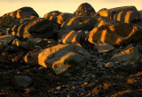 Shadows on stones
