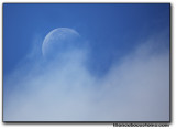 moon4806.jpg