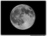 moon5018.jpg