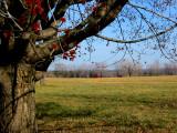 Knox Farm East Aurora NY