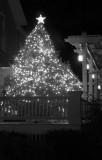 December 2006 PaD