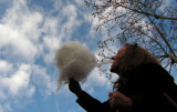 eating the clouds