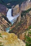 Yellowstone's Yellow Stones