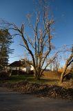 Buffalo Snow Storm - October 12th-13th 2006