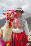 Colca Canyon, Nearby Villages and Condors