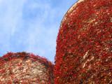 red silo