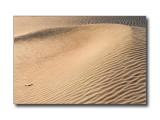 Sand Dunes #2Death Valley Nat'l Park, CA
