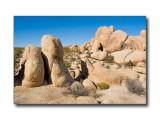 Rock FormationsJoshua Tree Nat'l Park, CA