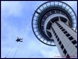 Sky jump from Sky Tower, Auckland