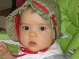 Sophia's 1st Year